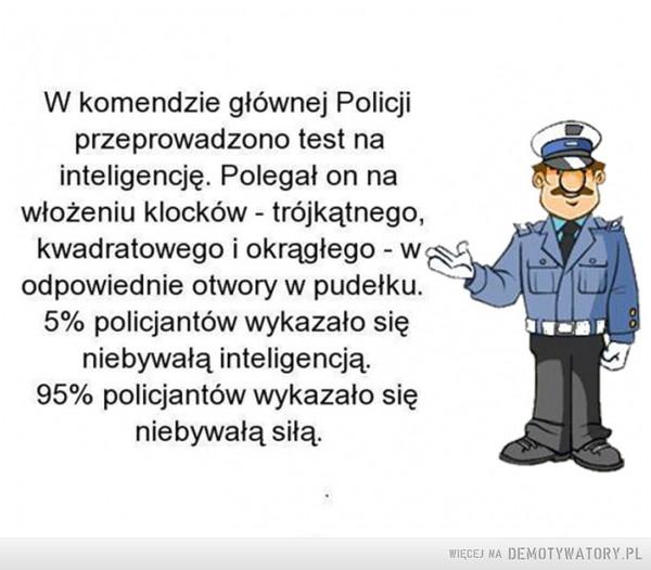 Test na inteligencję –