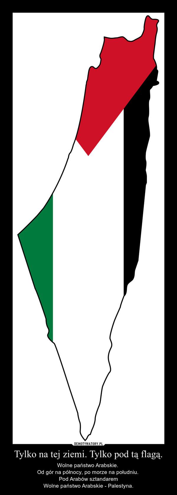Tylko na tej ziemi. Tylko pod tą flagą. – Wolne państwo Arabskie. Od gór na północy, po morze na południu. Pod Arabów sztandaremWolne państwo Arabskie - Palestyna.