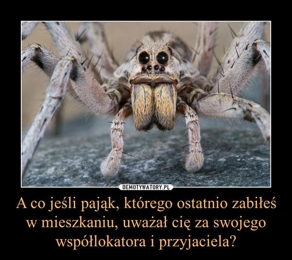 A co jeśli pająk, którego ostatnio zabiłeś w mieszkaniu, uważał cię za swojego współlokatora i przyjaciela? –