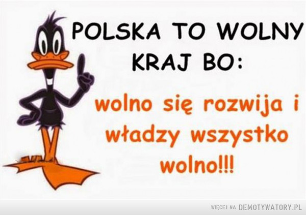 Polska to wolny kraj: –