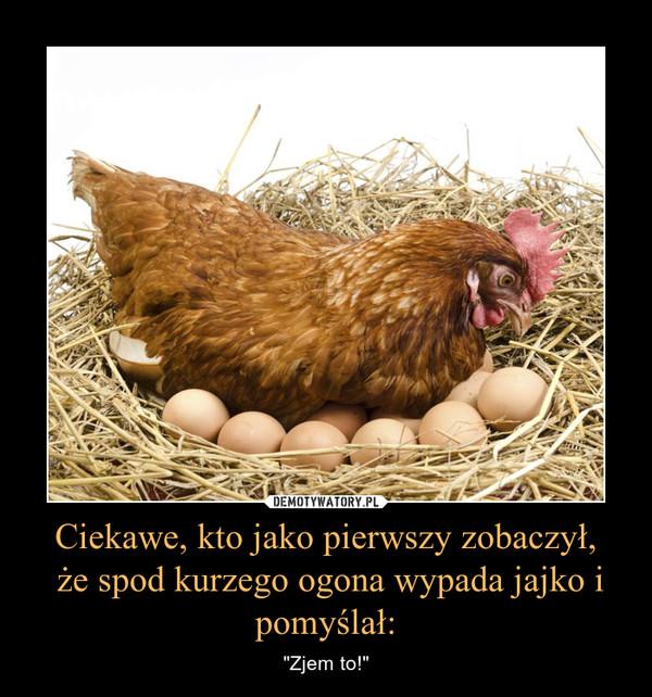 """Ciekawe, kto jako pierwszy zobaczył, że spod kurzego ogona wypada jajko i pomyślał: – """"Zjem to!"""""""