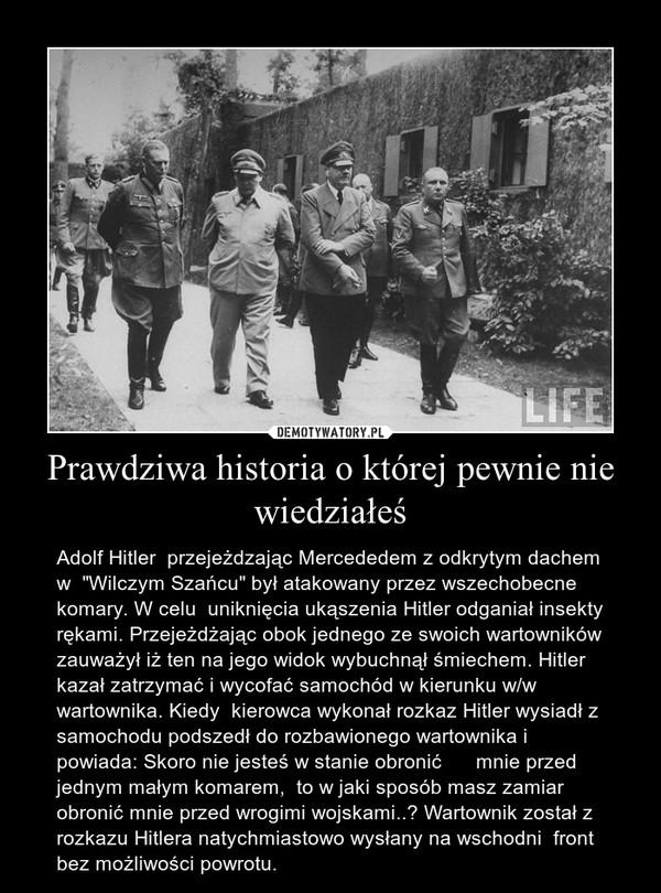"""Prawdziwa historia o której pewnie nie wiedziałeś – Adolf Hitler  przejeżdzając Mercededem z odkrytym dachem w  """"Wilczym Szańcu"""" był atakowany przez wszechobecne  komary. W celu  uniknięcia ukąszenia Hitler odganiał insekty rękami. Przejeżdżając obok jednego ze swoich wartowników zauważył iż ten na jego widok wybuchnął śmiechem. Hitler kazał zatrzymać i wycofać samochód w kierunku w/w wartownika. Kiedy  kierowca wykonał rozkaz Hitler wysiadł z samochodu podszedł do rozbawionego wartownika i powiada: Skoro nie jesteś w stanie obronić      mnie przed jednym małym komarem,  to w jaki sposób masz zamiar  obronić mnie przed wrogimi wojskami..? Wartownik został z rozkazu Hitlera natychmiastowo wysłany na wschodni  front bez możliwości powrotu."""