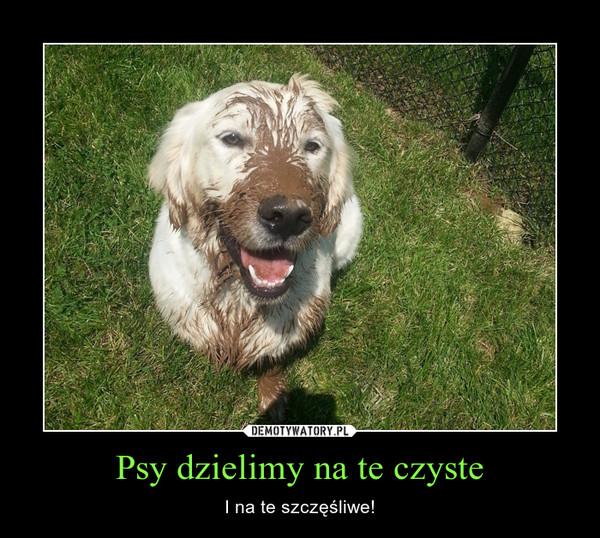 Psy dzielimy na te czyste – I na te szczęśliwe!
