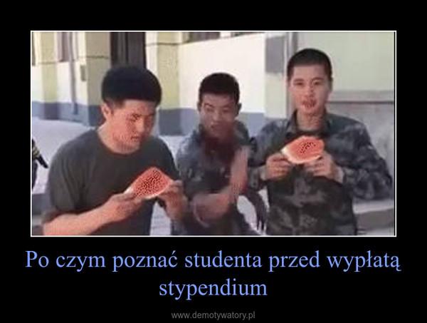 Po czym poznać studenta przed wypłatą stypendium –
