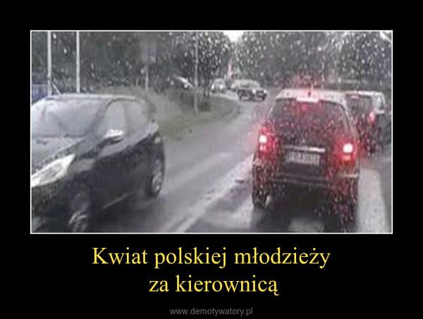Kwiat polskiej młodzieży za kierownicą –