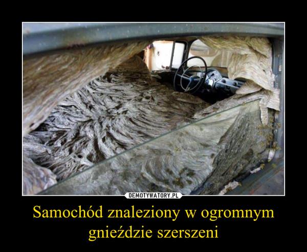 Samochód znaleziony w ogromnym gnieździe szerszeni –