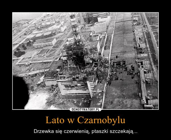 Lato w Czarnobylu – Drzewka się czerwienią, ptaszki szczekają...