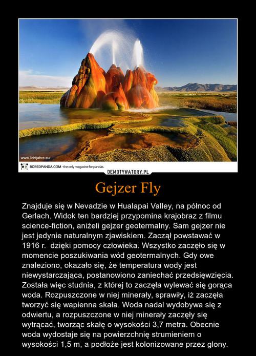 Gejzer Fly