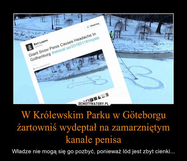 W Królewskim Parku w Göteborgu żartowniś wydeptał na zamarzniętym kanale penisa – Władze nie mogą się go pozbyć, ponieważ lód jest zbyt cienki...