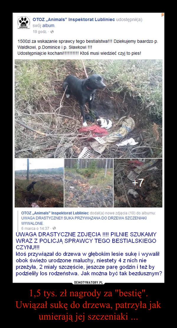 """1,5 tys. zł nagrody za """"bestię"""".Uwiązał sukę do drzewa, patrzyła jak umierają jej szczeniaki ... –"""