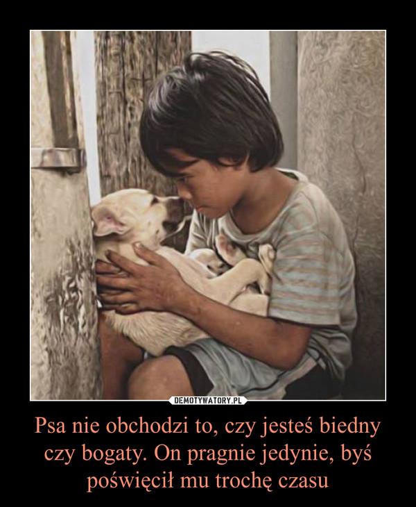 Psa nie obchodzi to, czy jesteś biedny czy bogaty. On pragnie jedynie, byś poświęcił mu trochę czasu –