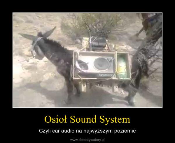 Osioł Sound System – Czyli car audio na najwyższym poziomie