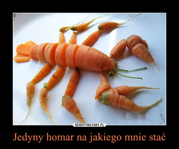 Jedyny homar na jakiego mnie stać –