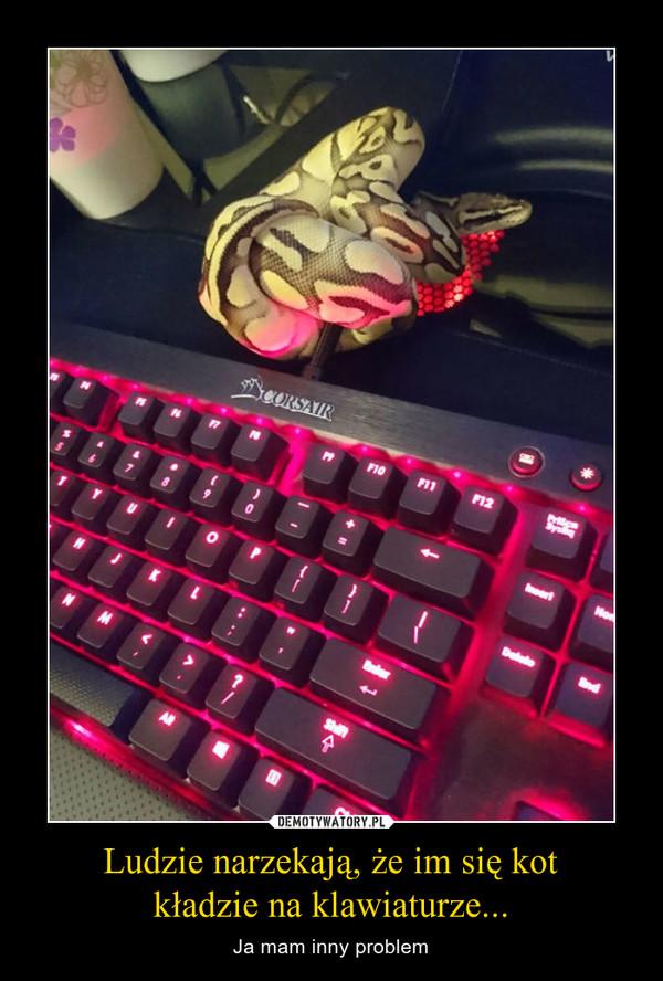 Ludzie narzekają, że im się kotkładzie na klawiaturze... – Ja mam inny problem