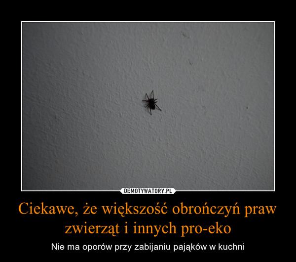 Ciekawe, że większość obrończyń praw zwierząt i innych pro-eko – Nie ma oporów przy zabijaniu pająków w kuchni