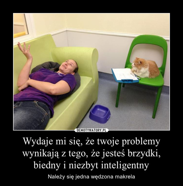 Wydaje mi się, że twoje problemy wynikają z tego, że jesteś brzydki, biedny i niezbyt inteligentny – Należy się jedna wędzona makrela
