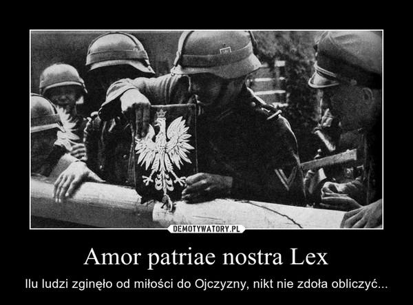 Amor patriae nostra Lex – Ilu ludzi zginęło od miłości do Ojczyzny, nikt nie zdoła obliczyć...