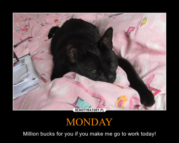 MONDAY – Million bucks for you if you make me go to work today!