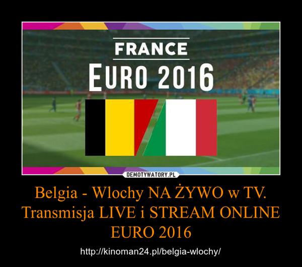 Belgia - Wlochy NA ŻYWO w TV. Transmisja LIVE i STREAM ONLINE EURO 2016 – http://kinoman24.pl/belgia-wlochy/