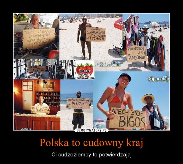 Polska to cudowny kraj – Ci cudzoziemcy to potwierdzają