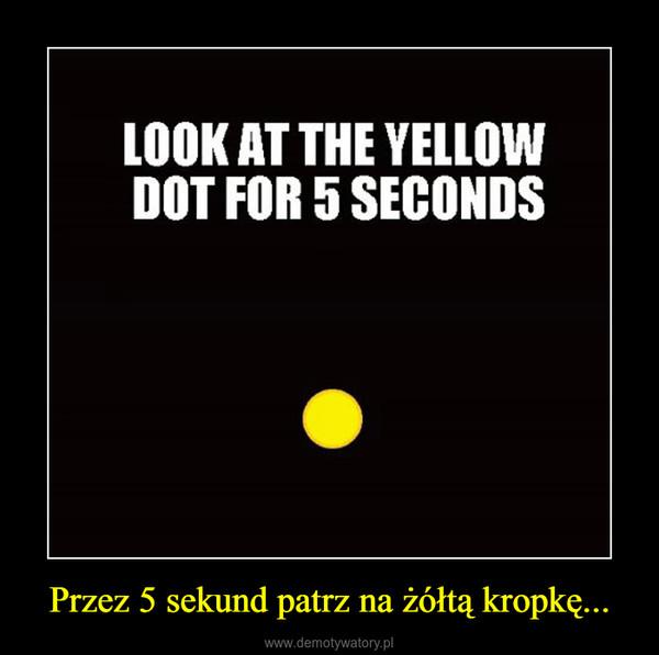 Przez 5 sekund patrz na żółtą kropkę... –