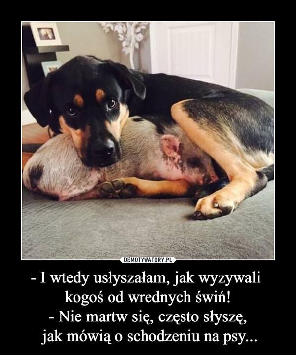 - I wtedy usłyszałam, jak wyzywali kogoś od wrednych świń!- Nie martw się, często słyszę, jak mówią o schodzeniu na psy... –