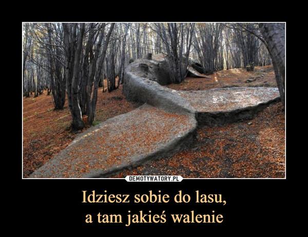 Idziesz sobie do lasu,a tam jakieś walenie –