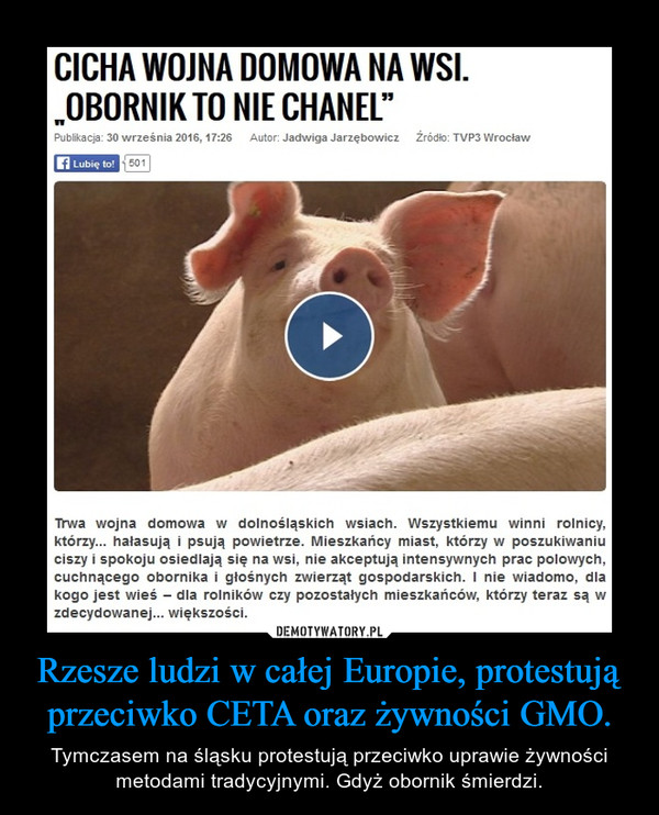 Rzesze ludzi w całej Europie, protestują przeciwko CETA oraz żywności GMO. – Tymczasem na śląsku protestują przeciwko uprawie żywności metodami tradycyjnymi. Gdyż obornik śmierdzi.