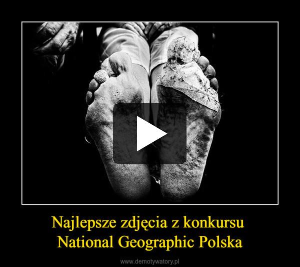 Najlepsze zdjęcia z konkursu National Geographic Polska –
