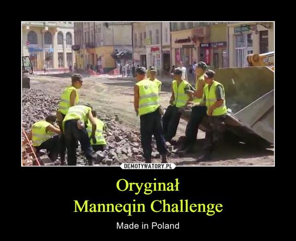OryginałManneqin Challenge – Made in Poland