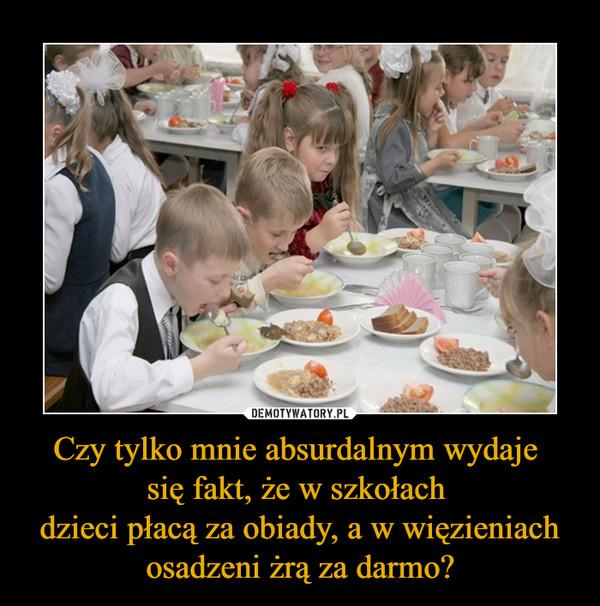 Czy tylko mnie absurdalnym wydaje się fakt, że w szkołach dzieci płacą za obiady, a w więzieniach osadzeni żrą za darmo? –