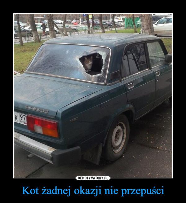 Kot żadnej okazji nie przepuści –