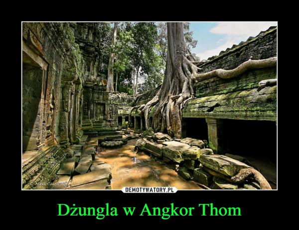 Dżungla w Angkor Thom –