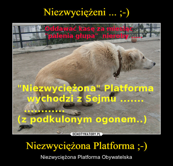 Niezwyciężona Platforma ;-) – Niezwyciężona Platforma Obywatelska