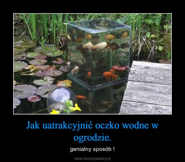 Jak uatrakcyjnić oczko wodne w ogrodzie. – genialny sposób !