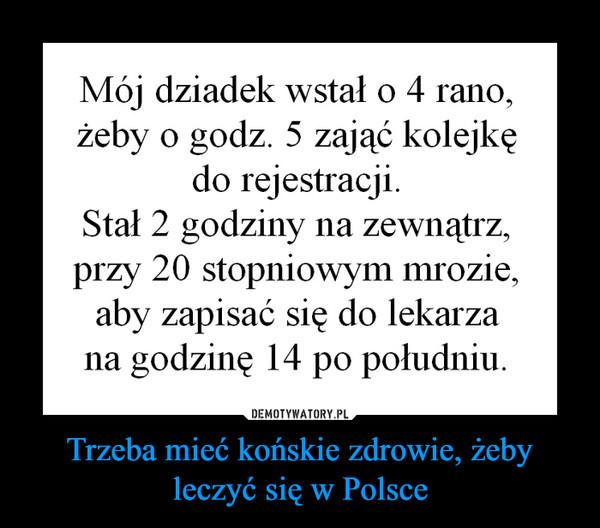 Trzeba mieć końskie zdrowie, żeby leczyć się w Polsce –  Mój dziadek wstał o 4 rano,żeby o godz. 5 zająć kolejkędo rejestracji.Stał 2 godziny na zewnątrz,przy 2 0 stopniowym mrozie,aby zapisać się do lekarzana godzinę 14 po południu.