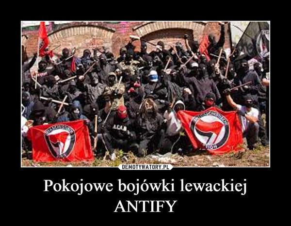 Pokojowe bojówki lewackiej ANTIFY –