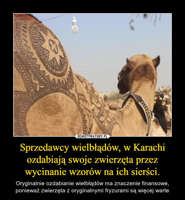 Sprzedawcy wielbłądów, w Karachi ozdabiają swoje zwierzęta przez wycinanie wzorów na ich sierści. – Oryginalnie ozdabianie wielbłądów ma znaczenie finansowe, ponieważ zwierzęta z oryginalnymi fryzurami są więcej warte