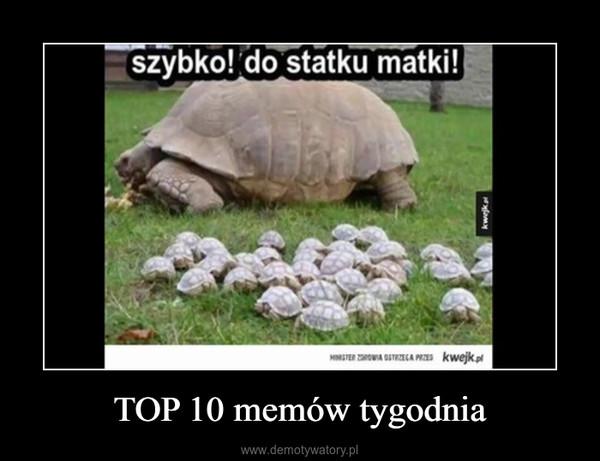 TOP 10 memów tygodnia –