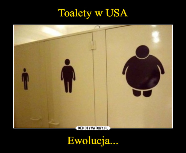 Ewolucja... –