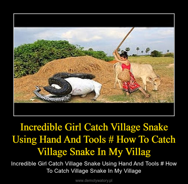 Incredible Girl Catch Village Snake Using Hand And Tools # How To Catch Village Snake In My Villag – Incredible Girl Catch Village Snake Using Hand And Tools # How To Catch Village Snake In My Village
