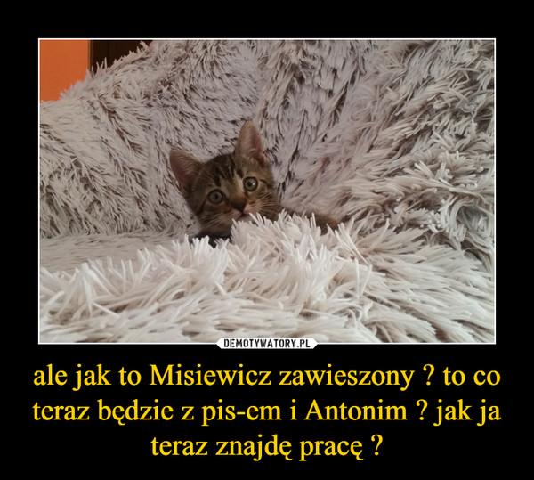 ale jak to Misiewicz zawieszony ? to co teraz będzie z pis-em i Antonim ? jak ja teraz znajdę pracę ? –