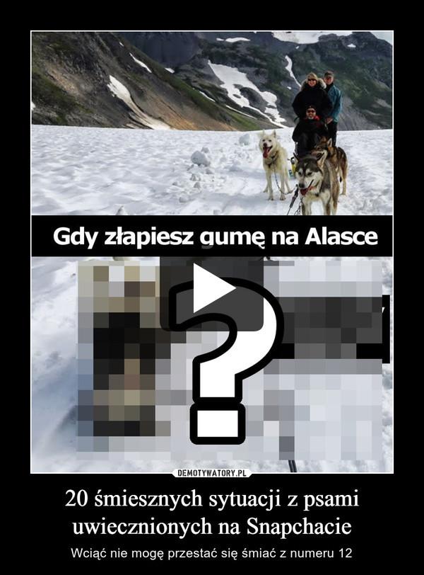 20 śmiesznych sytuacji z psami uwiecznionych na Snapchacie – Wciąć nie mogę przestać się śmiać z numeru 12