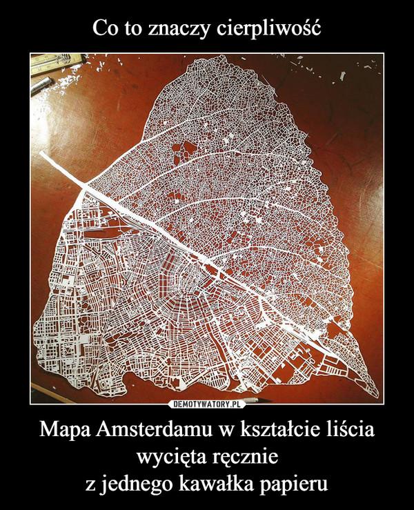 Mapa Amsterdamu w kształcie liścia wycięta ręczniez jednego kawałka papieru –