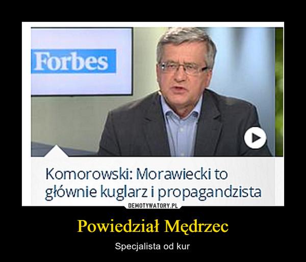 Powiedział Mędrzec – Specjalista od kur