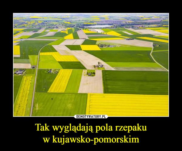 1495609259_awknxy_600.jpg