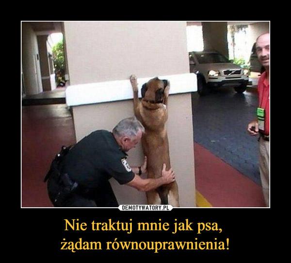 Nie traktuj mnie jak psa, żądam równouprawnienia! –