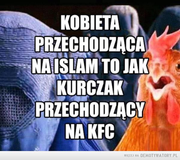 Kurczaki nie bardzo mają wybór –  KOBIETAPRZECHODZĄCANA ISLAM TO JAKKURCZAKPRZECHODZĄCYNA KFC