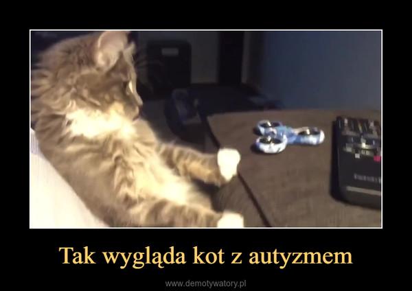 Tak wygląda kot z autyzmem –