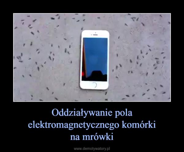 Oddziaływanie pola elektromagnetycznego komórkina mrówki –